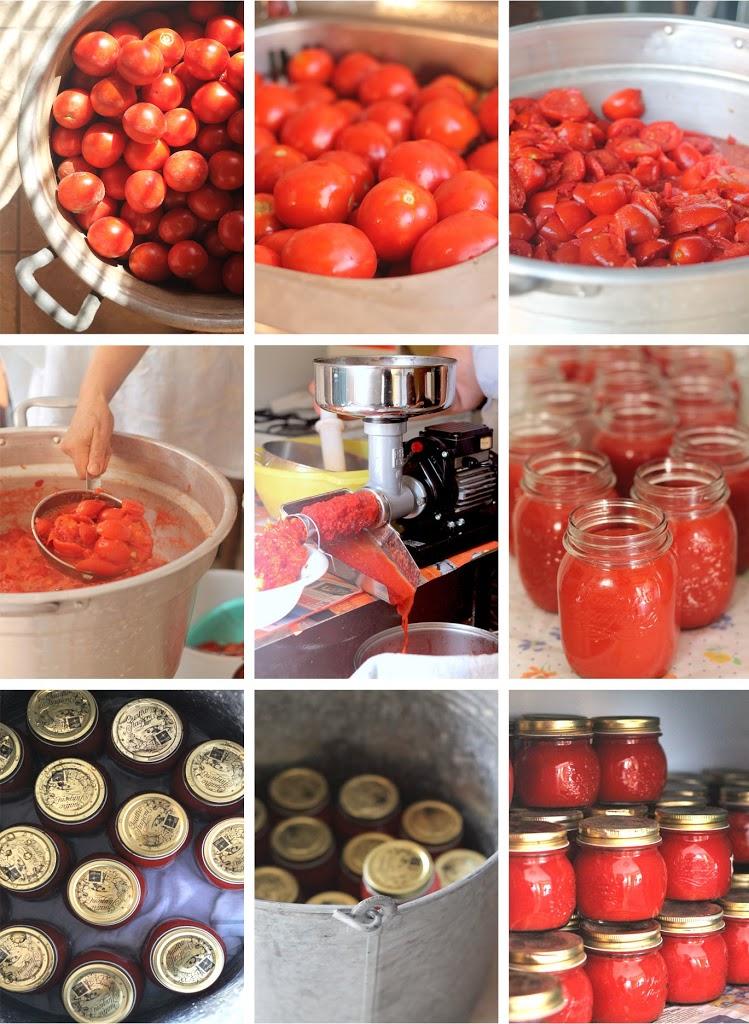Conserva di Pomodoro Home Made