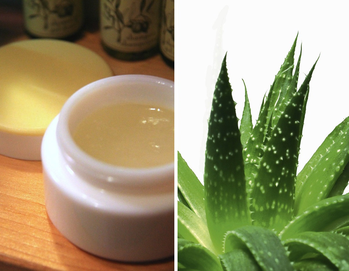 Gel d'aloe vera fatto in casa