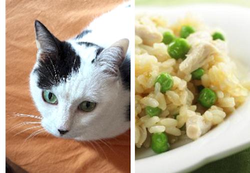 Bocconcini di Pollo con riso e piselli
