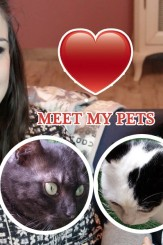 Meet my Pets Video Tag