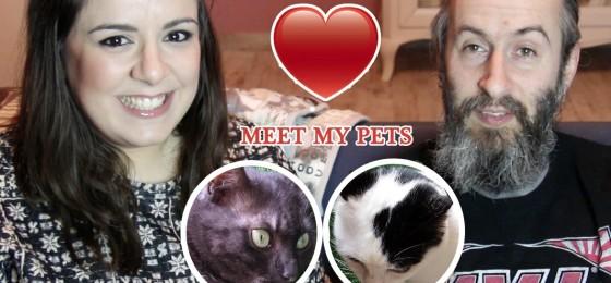 Meet my Pets Video Tag