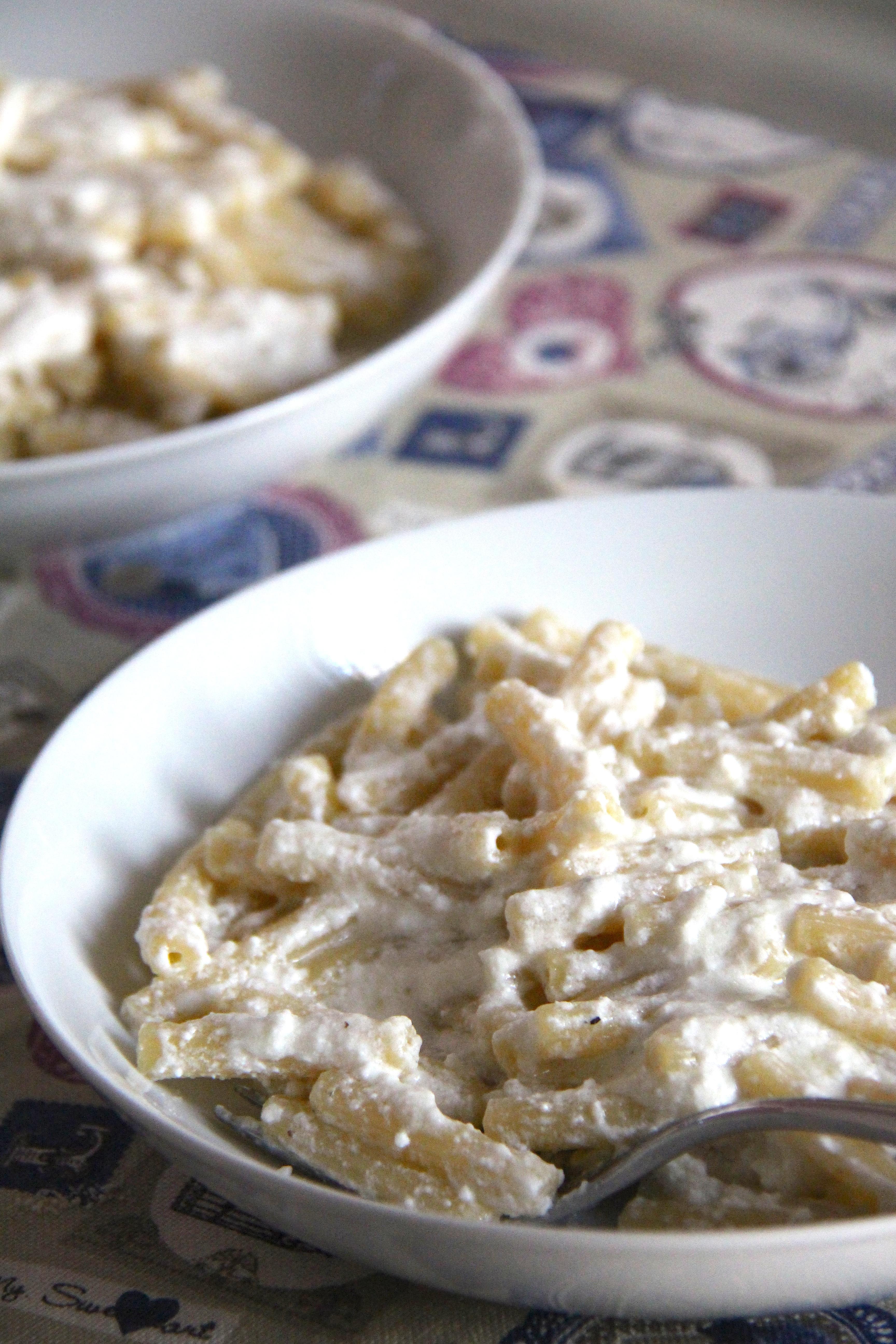 Pasta con crema di ricotta di pecora all'olio d'oliva e lasciate in pace i nostri ulivi!