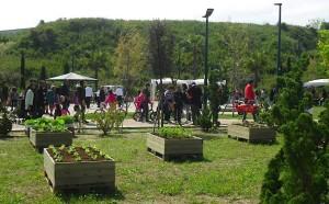 Ad aprile il SALENTO si tinge di verde: HORTUS BRINDISI