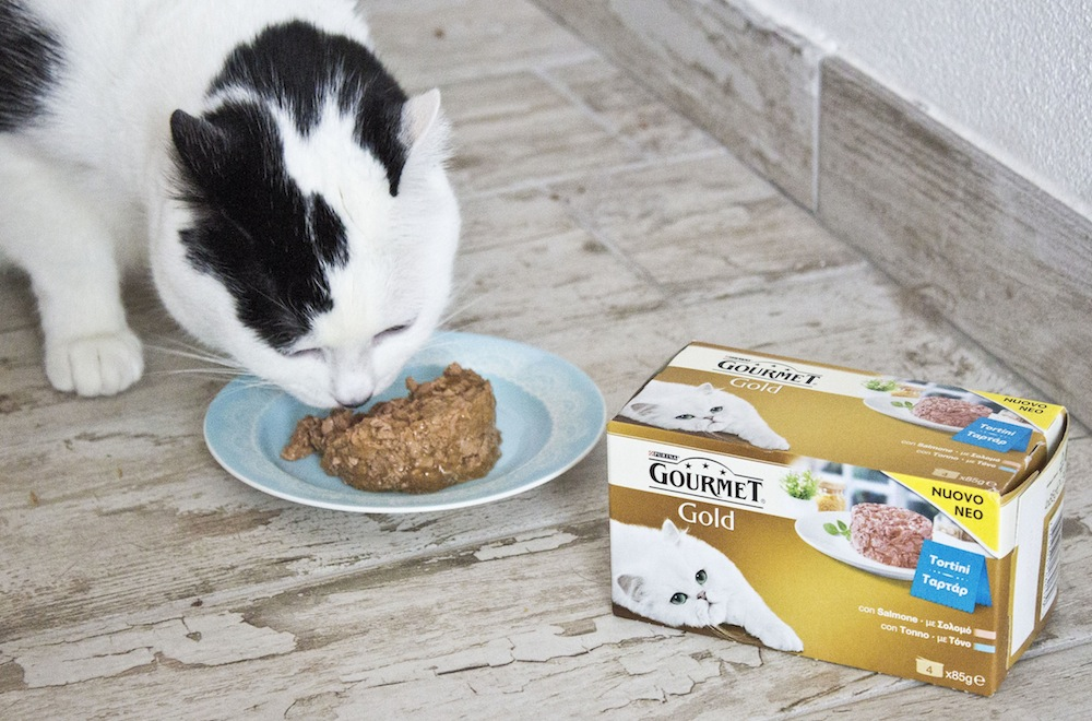 TORTINI gustosi per veri Gatti GOURMET