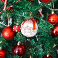IL MIO ALBERO DI NATALE | My Christmas Tree | VlogMas