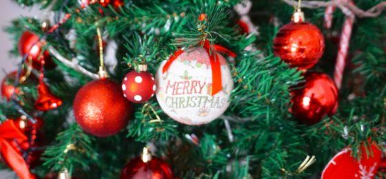 IL MIO ALBERO DI NATALE   My Christmas Tree   VlogMas2017